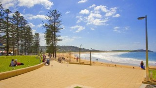 Trading Places Real Estate Services - Real Estate Agency in Dee Why